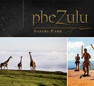 Phezulu Park Cultural Tour